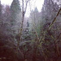 Tryon Creek Park (Portland with Sara's family), November 30, 2013, 2.5 miles