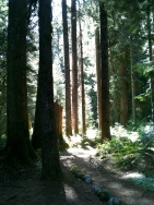 Deception Creek, September 1, 2012, 10 miles, 1200 ft