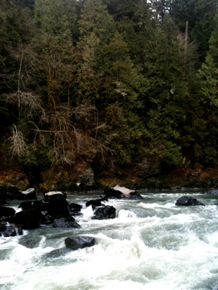 Lime Kiln Trail, December 31, 2012, 7 miles