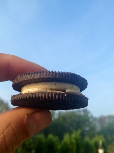 Trail food is the soul of invention - take the Double Double; two double stuffed Oreos, remove two of the cookies, and stack - leaving double the double stuff. Why this is better? Because...