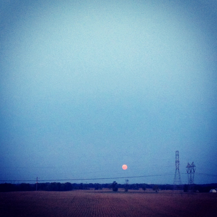 Red moon rises