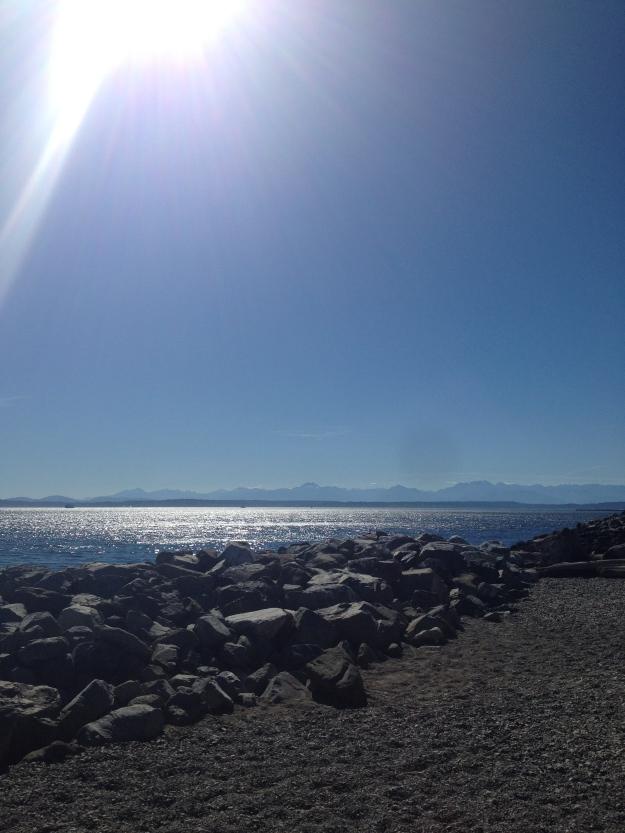Elliot Bay trail