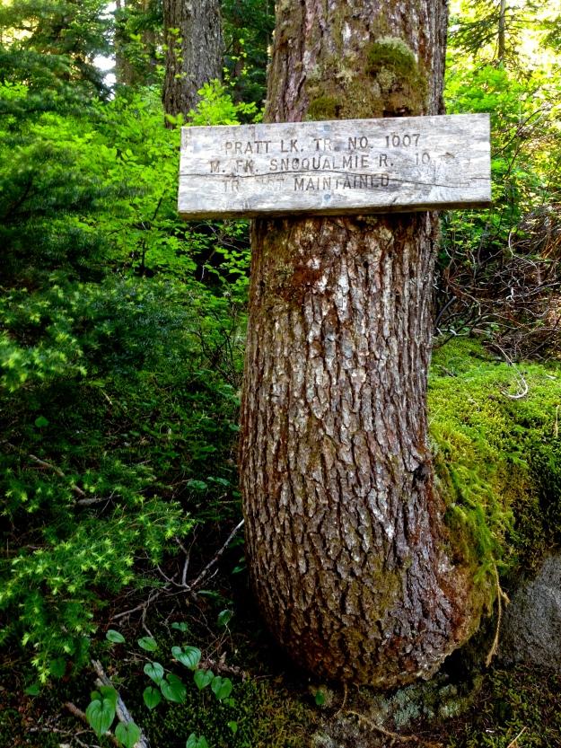 Pratt River Trail