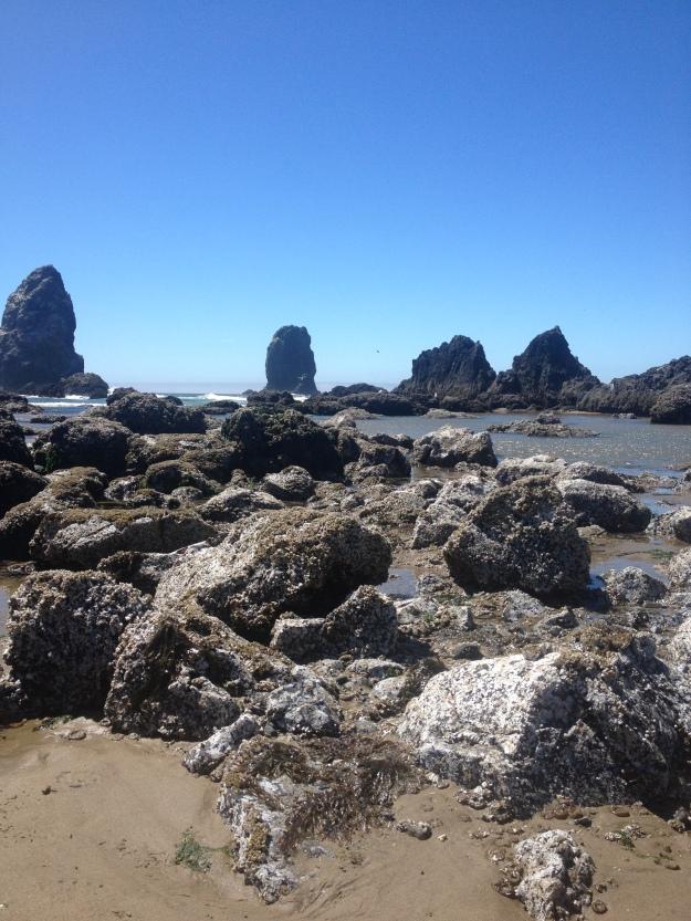 Seaside rocks