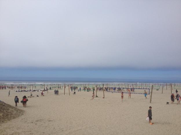 Seaside Seashore