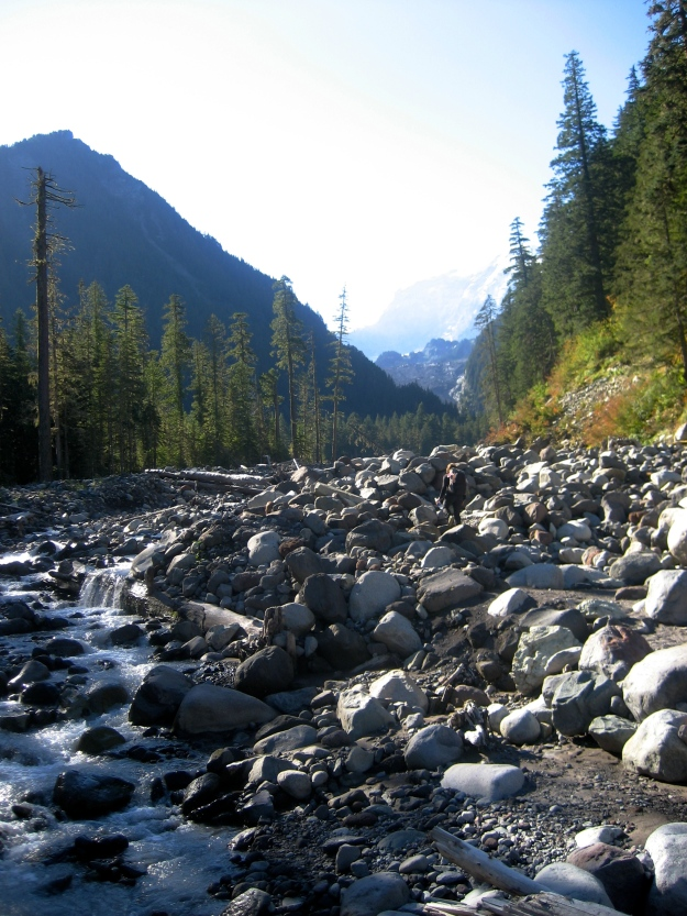 A small tongue of the Carbon River in early light