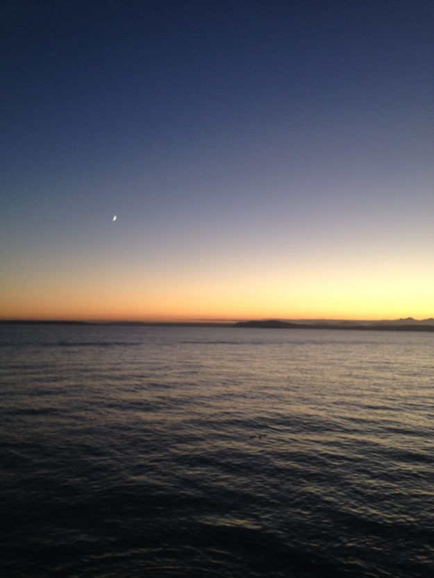 Elliott Bay from Myrtle Edwards Park