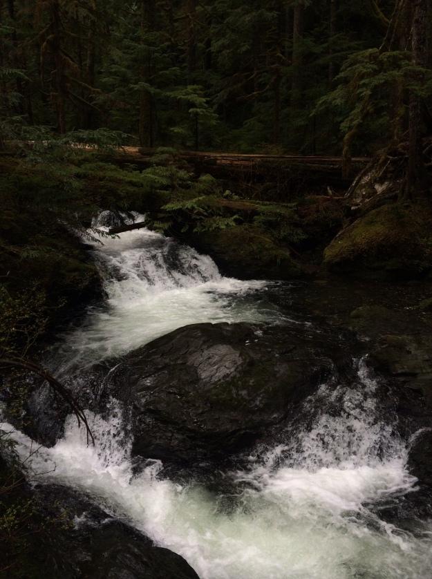 lots of streams - photo by dk