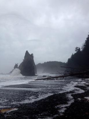 Northwest School of Mystical Hikers vibe...