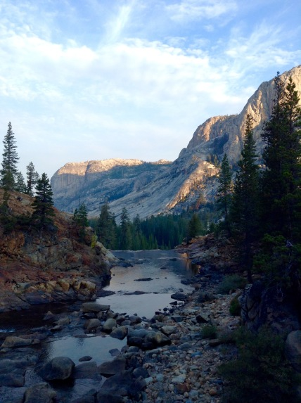 Yosemite National Park , looking picture perfect